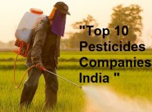 Top-10-Pesticides-Companies-in-India
