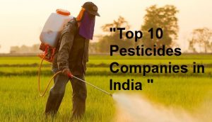 Top 10 Pesticides Companies in India - Learning Center - fundoodata com